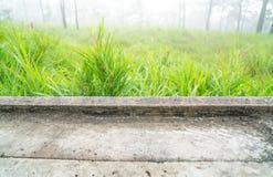 Leeren Sie konkreten Schreibtisch und grünen Hintergrund der Wiese morgens Leerstelle für Text und Bilder Stockbilder