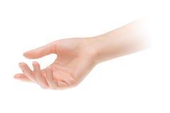 Leeren Sie offene Frauenhand Lizenzfreies Stockfoto