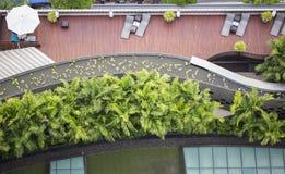 Leeren Sie sich sunbed mit schönem Garten Stockfotografie