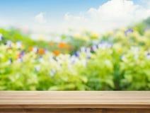 Leeren Sie sich von der hölzernen Tischplatte auf Unschärfe der neuen grünen Zusammenfassung vom Garten Lizenzfreies Stockbild