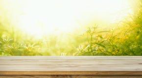 Leeren Sie sich von der hölzernen Tischplatte auf Unschärfe der neuen grünen Zusammenfassung vom Garten Stockfotografie