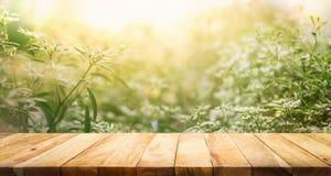Leeren Sie sich von der hölzernen Tischplatte auf Unschärfe der neuen grünen Zusammenfassung vom Garten Lizenzfreie Stockfotografie