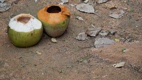 Leeren Sie zwei Kokosnüsse auf dem Sandboden lizenzfreie stockfotos