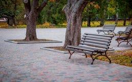 Leerer Autumn Park Lizenzfreie Stockbilder