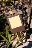 Leerer Brown kennzeichnen innen tropische Umlagerungen stockbilder