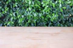 Leerer Holztisch mit grünem Busch, kann als Hintergrund benutzt werden Lizenzfreie Stockfotos