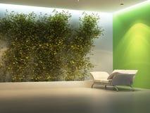 Leerer Innenraum mit Anlage Lizenzfreie Stockbilder