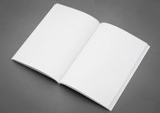 Leerer Katalog, Broschüre, Zeitschriften lizenzfreie stockfotografie