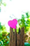 Leerer Notizblock oder klebriges Anmerkungsrosa auf Bauholz mit bokeh sunligh stockfotografie