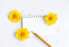 Leerer Notizblockbleistift und -blumen Stockbilder