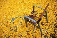 Leerer Sitz im Herbstpark voll von gelben Blättern Lizenzfreie Stockbilder