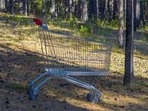 Leerer Stahlsupermarkt-Warenkorb mit Rot-Griffen bei Forest Clearing, tief in einem Holz Unbedeutendes Leben Schützen Sie Erde stockbilder