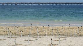 Leerer Strand mit blauem und grünem Meer Stockfoto