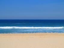 Leerer Strand mit Seemöwen stockfotos