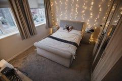Leerer Student Flat Bedroom lizenzfreie stockfotos