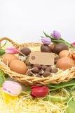 Leerer Umbau und Korb mit verschiedenen Eiern und Tulpen für Ostern-themenorientierte grafische Ressource lizenzfreies stockfoto