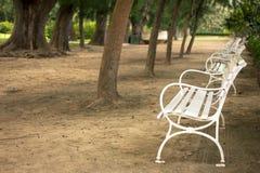 Leerer weißer Gartenstuhl Stockfotografie