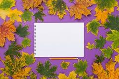 Leeres Album im Rahmen des bunten Herbstlaubs Lizenzfreie Stockfotos