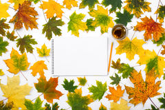 Leeres Album mit Tee im Rahmen des Herbstlaubs Lizenzfreie Stockbilder