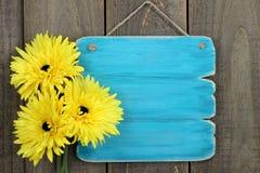 Leeres antikes blaues Zeichen mit den großen gelben Sonnenblumen, die am rustikalen hölzernen Zaun hängen Stockfoto