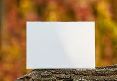 Leeres Blatt Papier auf einer Niederlassung Herbst im Freien Lizenzfreies Stockfoto