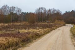 Leeres Land, Feldweg im Winter latvian lizenzfreies stockfoto