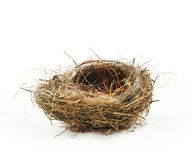 Leeres Nest Lizenzfreie Stockfotos
