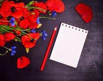 Leeres Papiernotizbuch mit einem roten Bleistift Stockfotos