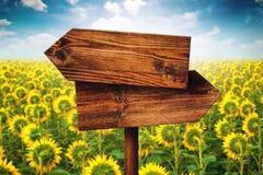 Leeres rustikales gegenüber von Richtungs-Holzschild im Sonnenblumenfeld Stockfotos
