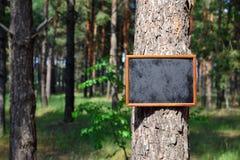 Leeres schwarzes Kreidebrett hängt am Stamm Stockfoto