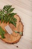 Leeres Tag auf hölzernem Hintergrund mit Farn und verringertem Baum Stockfoto