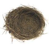 Leeres Vogel-Nest Stockfotos