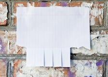Leeres Weißbuch mit reißen Vorsprünge auseinander lizenzfreie stockfotos