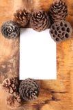 Leeres weißes Blatt, umgeben durch Kegel Lizenzfreie Stockfotografie