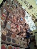 Leerkleuring stock foto