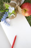 Leerseite des Buches mit rotem Stift Stockbilder