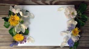 Leerseite eines Notizbuches und des Frühlinges blüht Stockfotografie
