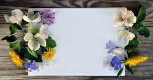 Leerseite eines Notizbuches und des Frühlinges blüht Stockfoto