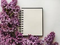 Leerseite für Ihre Aufschriften, helle lila Blumen stockfotografie