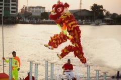 Leeuw die in Chinees Nieuwjaar dansen. Royalty-vrije Stock Foto