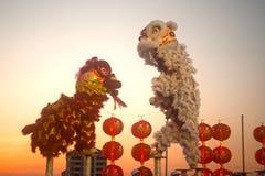 Leeuw die in Chinees Nieuwjaar dansen. Stock Foto's