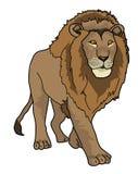 Leeuw, dier Royalty-vrije Stock Foto's