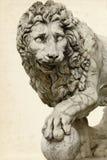 Leeuw in Florence stock afbeelding