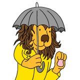 Leeuw gebruikend paraplu Royalty-vrije Stock Afbeelding