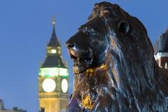 Leeuw in het Vierkant van Trafalgar van Londen met Big Ben op de achtergrond Royalty-vrije Stock Foto