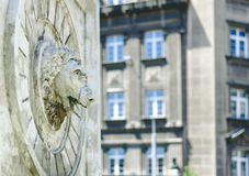 Leeuw hoofdstandbeeld op de muur van de steenfontein het spuiten water Royalty-vrije Stock Foto