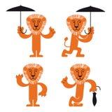 Leeuw met paraplu Stock Foto