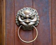 Leeuw op deur Stock Foto's