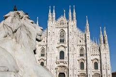 Leeuw op Milaan Royalty-vrije Stock Foto