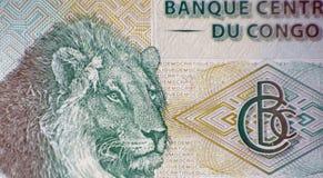 Leeuw` s Hoofd Royalty-vrije Stock Afbeelding